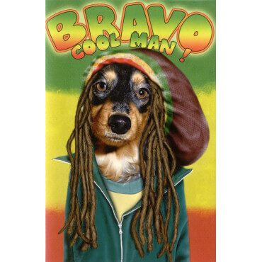 Carte Pets Rock Bravo Cool Man !