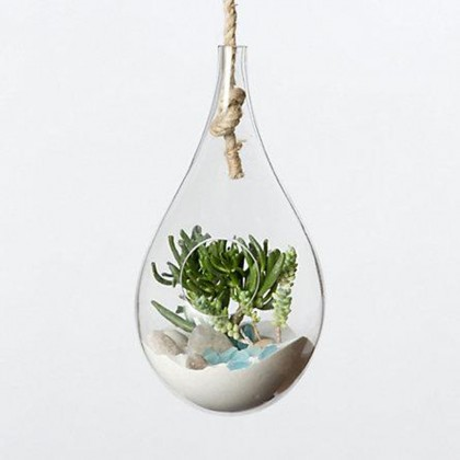 petit terrarium suspendu en verre 26 cm cadeau maestro. Black Bedroom Furniture Sets. Home Design Ideas