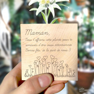 Ecocube Edelweiss Message d'Amour à Personnaliser Une belle edeleweiss