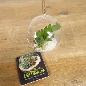 Coffret Air Terrarium