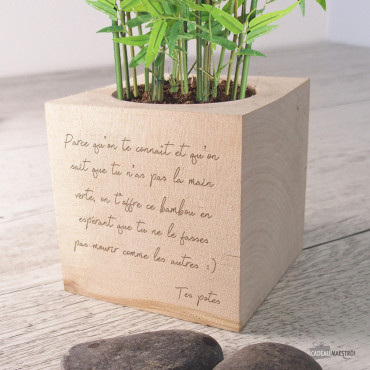 Ecocube Bambou Géant avec Message à Personnaliser