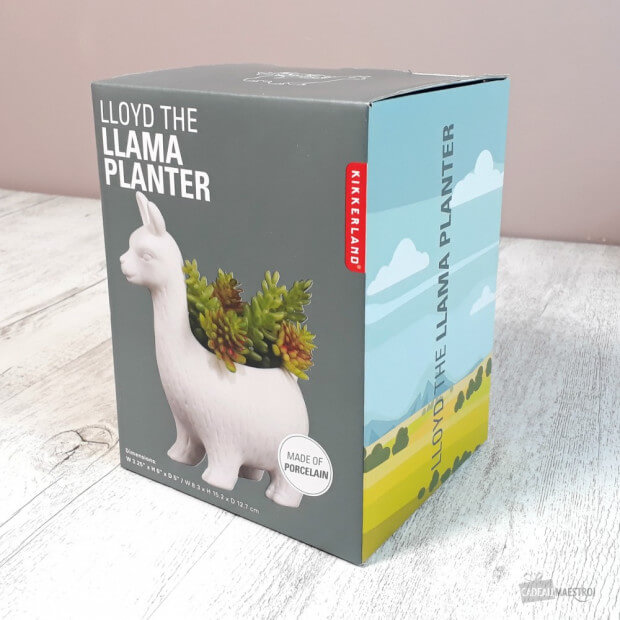 Pot de Fleurs Lama Packaging