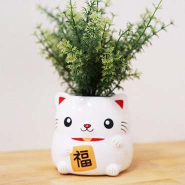 Pot de Fleurs Lucky Cat