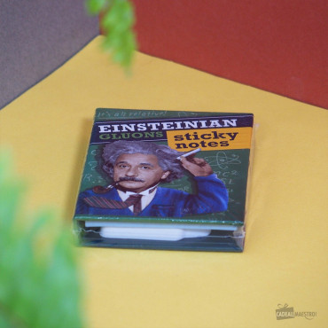 Livret de Blocs-Notes Einstein