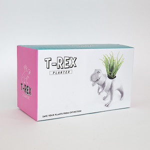 Pot de Fleurs Dinosaure Packaging