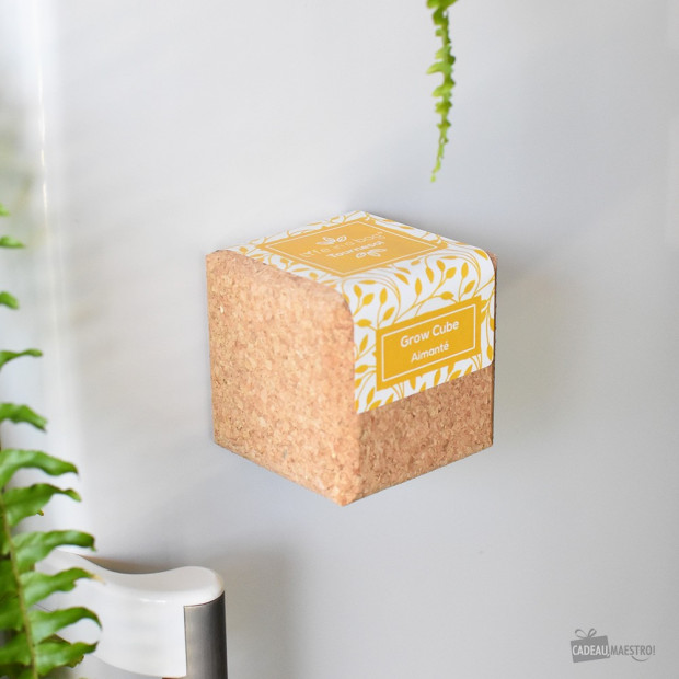 Grow Cube Tournesol Aimanté