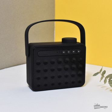 Radio Haut-Parleur Bluetooth Fresh